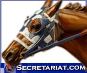 Secretariat.com